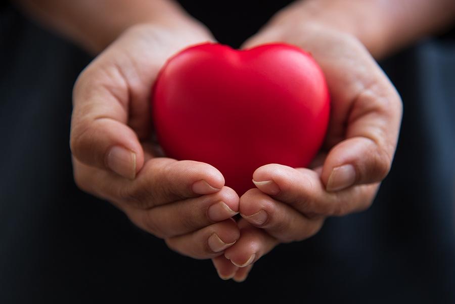 Single Member LLC - Importance Of Fostering Empathy