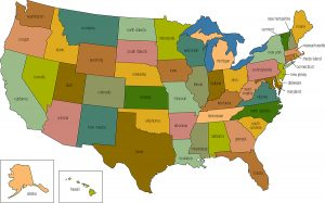 Best State To Set Up An LLC With A Single Member